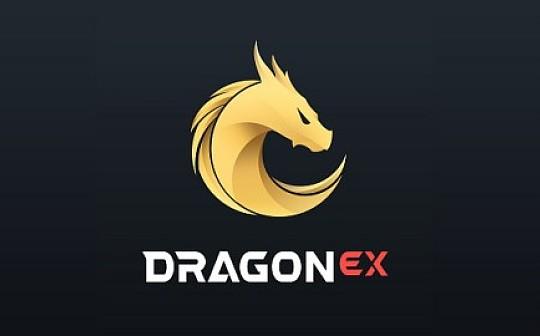 厚积薄发、向阳而生——DragonEx一周年