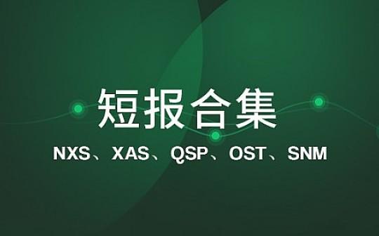 NXS 欲引入卫星网络以期拓展分布式体系|标准共识评级短报合集