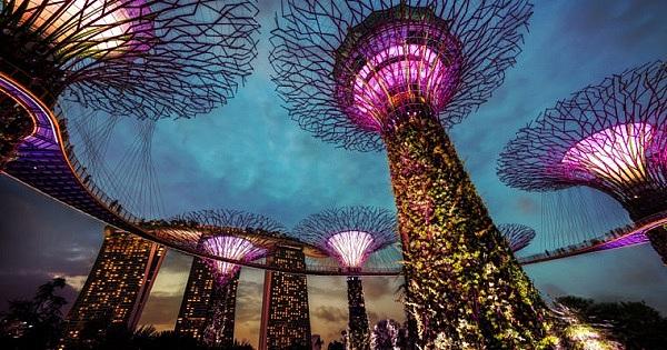 """新加坡金融管理局更新ICO监管指南 引入""""新支付框架"""""""