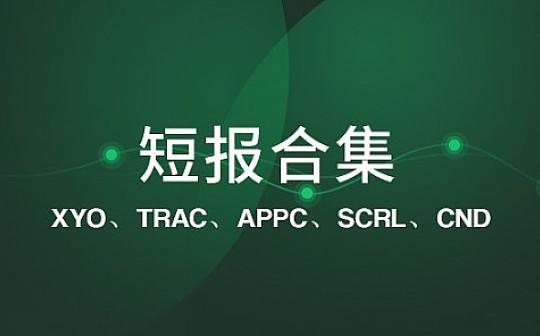 XY 公司已具备 Reg A+ 证券发行资质|标准共识评级短报合集
