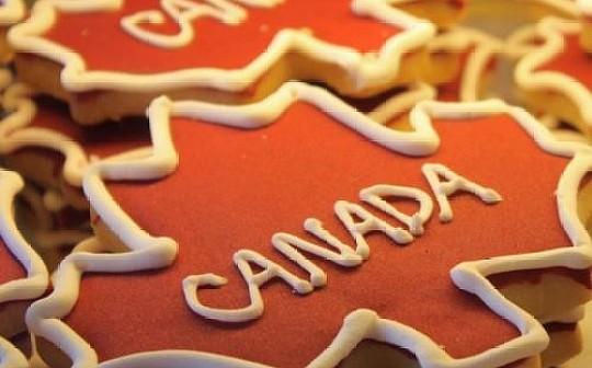 加拿大城市推出首個本地數字貨幣