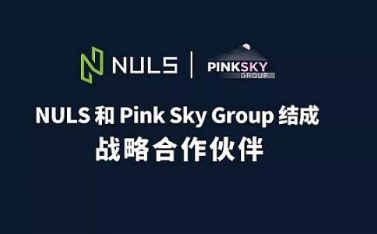 NULS和Pink Sky Group结成战略合作伙伴