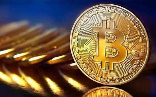 天机阁|市值排名前300中上线3年以上币种的现状简析