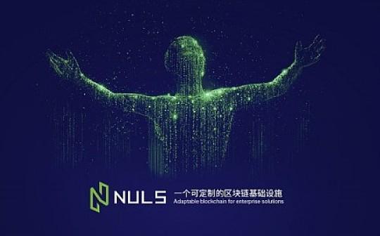 NULS大使竞选 1650万票 开启NULS社区自治新纪元