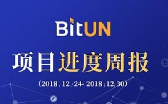 周报丨BitUN 项目周报12.24-12.30