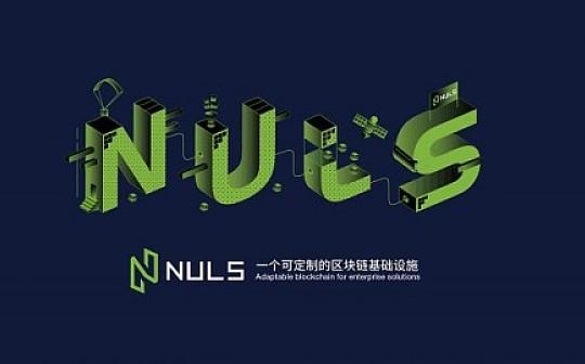 """赛迪发布""""2018年度公有链创新力十强"""" NULS上榜"""