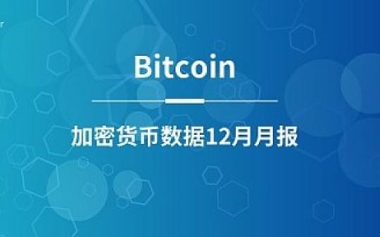 TokenGazer加密货币数据月报 | Bitcoin(比特币)12月月报