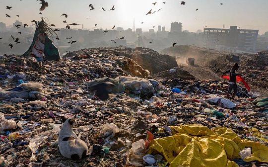 把塑料变黄金:用区块链技术解决塑料垃圾困境