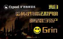 尊亿国际娱乐城_明星数字资产Grin