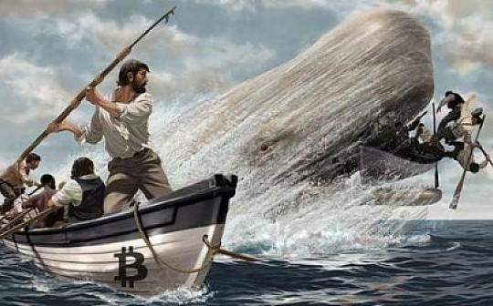 疯狂的巨鲸  趁着熊市  他们大量囤币/okfine赞助