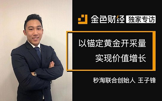 秒淘联合创始人王子锋:以锚定黄金开采量实现价值增长   金色财经独家专访