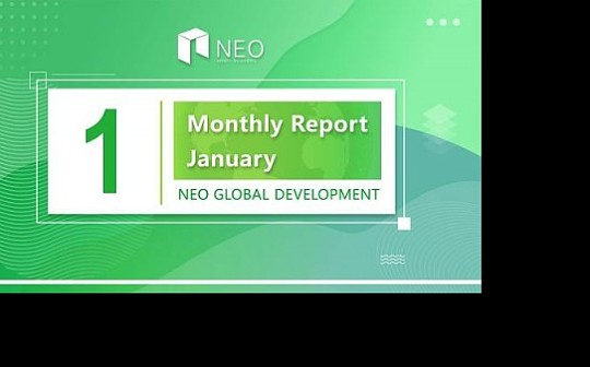 月报   NGD 2019 年 1月月报
