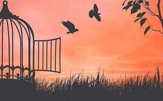 如何在不自由的世界获得自由?BM: 并不仅仅是区块链
