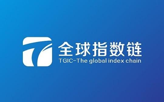 TGIC数字资产托管应用正式开发