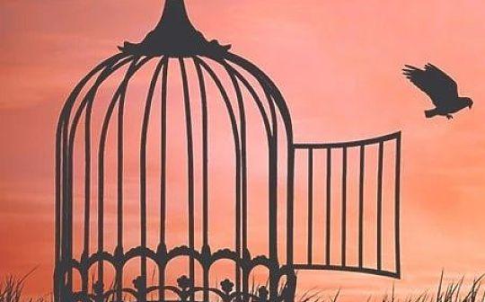BM说:如何在不自由的世界中找到自由 | 上半部分