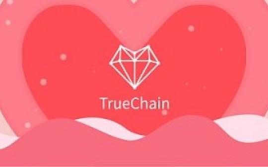 2019年TrueChain初链的发展方向和工作计划