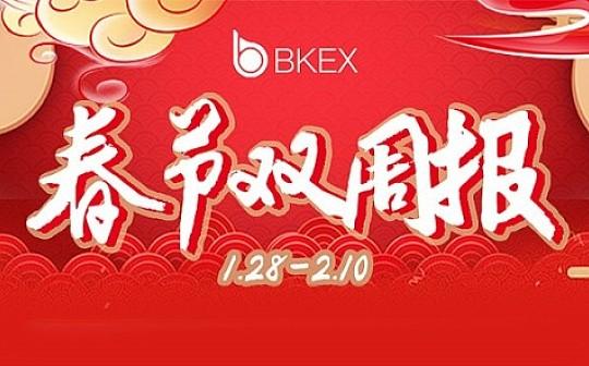 币客BKEX周报(01.28--02.10)