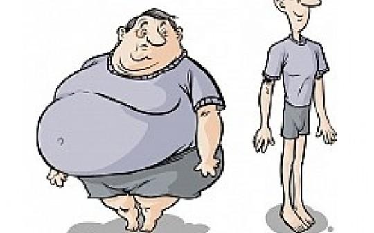 """这是""""胖""""协议和""""瘦""""应用的堆栈?"""