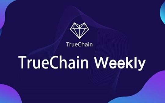 初链TrueChain周报 2019.2.11-2.17