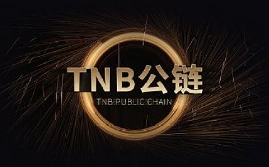 TNB:将持续推动个人时间实现自主数字化上链