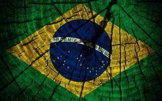 调查:巴西虚拟货币用户比例全球前五