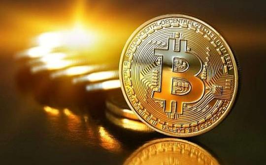分析师对加密货币新手投资者的四种建议,你最看好哪一种?