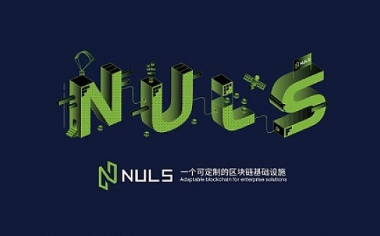97个节点 分布多个国家 NULS测试网是社区治理的重要成果