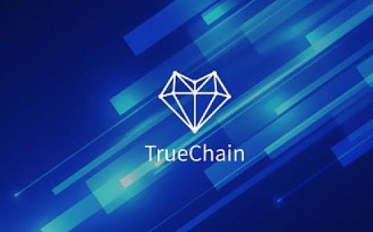初链TrueChain周报 2019.3.11-3.17