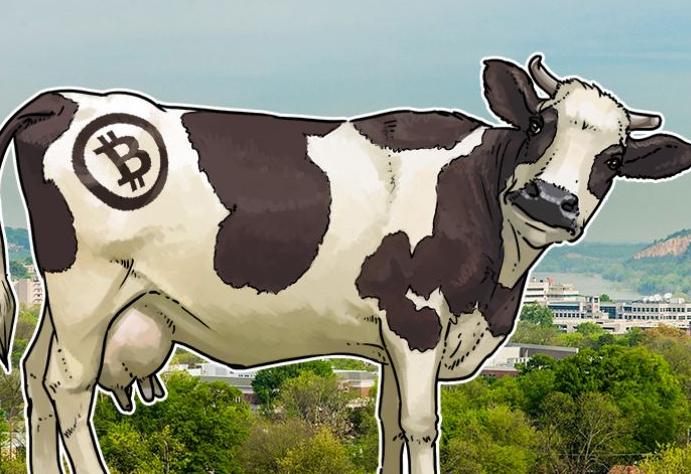 英国企业用区块链技术 追踪美国肉类供应链