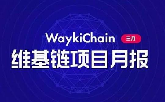 维基链WICC | 2019年3月项目进展月报