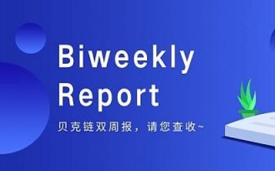 Bitconch Biweekly Report|贝克链项目进展报告