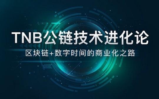 TNB加持区块链技术 创时间价值新高地