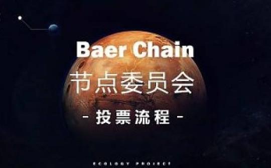 Baer Chain节点委员会投票流程