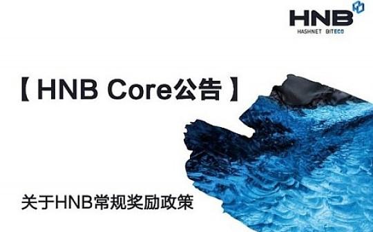 关于HNB常规奖励政策
