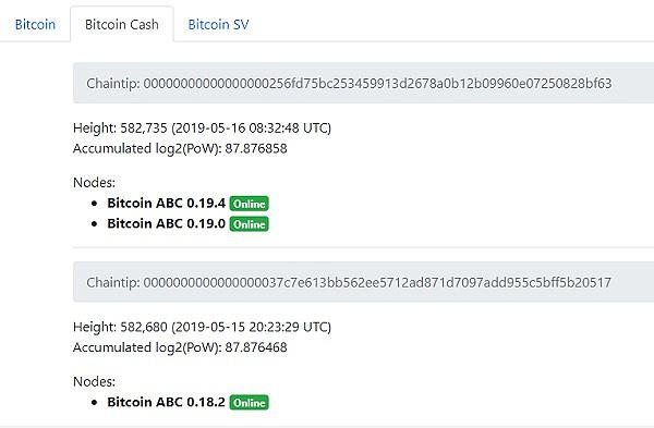内存池 Bug 导致 BCH 出现空交易区块,P网已暂停 BCHABC 交易
