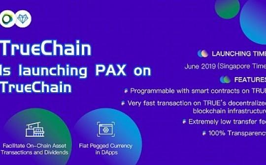 初链(TRUE) 将发行TrueChain平台稳定币PAX - 开创DeFi新视野