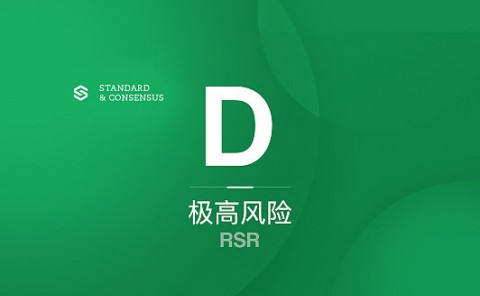 RSR 唯有投资团队亮眼|标准共识