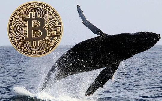 巨鲸地址Coinbase砸盘是谣言