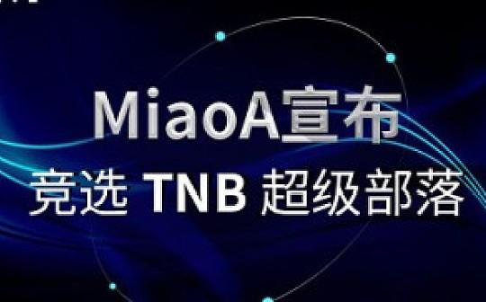 MiaoA宣布成功竞选TNB超级部落