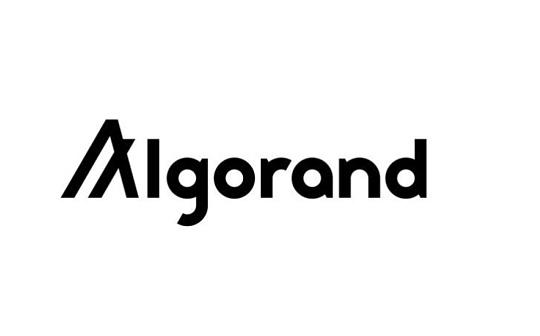 赚钱 还真的和智商有关 图灵奖级别资金盘Algorand