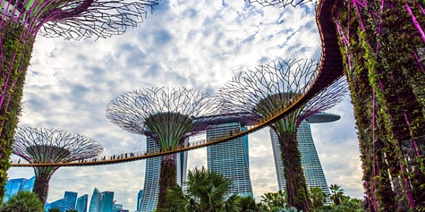 Singapore tax authorities propose to remove cryptocurrency transactions from GST taxation