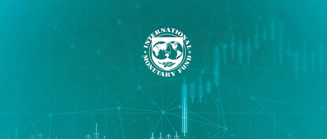 从IMF的视角看如何对数字货币进行分类