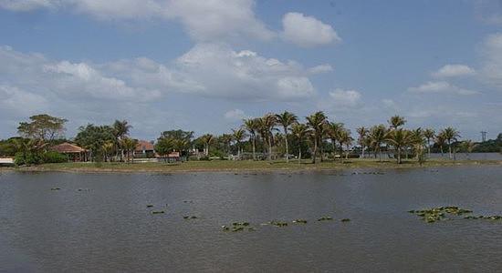 (Irma很可能会在佛罗里达南部以非常危险的飓风形态登陆)