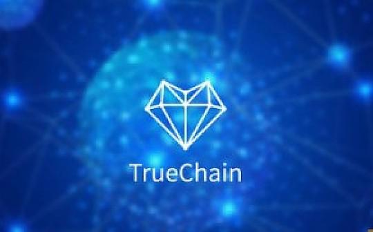 TrueChain初链AMA面对面: 8月2日和3日两期直播CEO与你相约