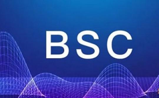 普华集团重要解读 有关BSC生态布局的说明