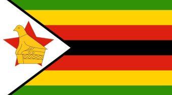 津巴布韦:政府提振黄金生产 黄金矿藏移出国家保护区供矿工使用