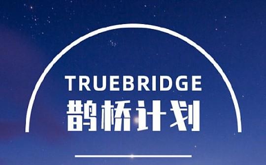 初链TrueChain 周报 2019.08.05-08.11