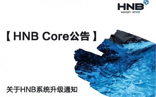 关于HNB系统升级通知