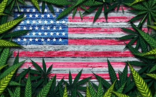 为什么大麻行业需要区块链?