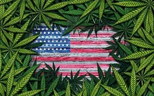 大麻行业需要区块链